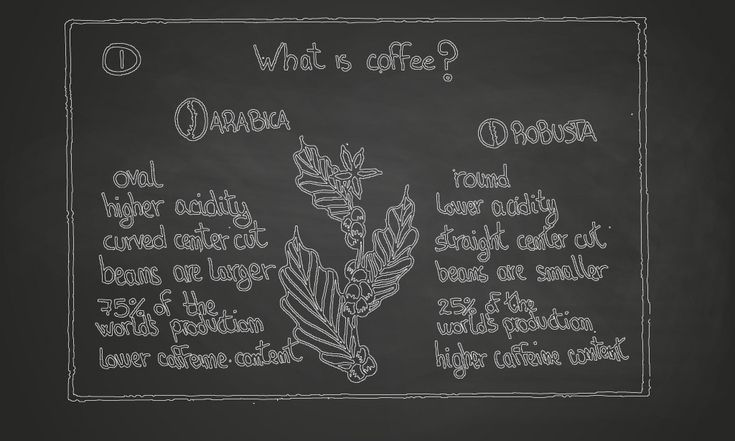 What is coffee - http://angelocarbone.eu/what-is-coffee/