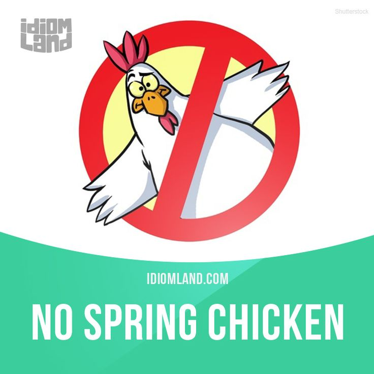 """""""No spring chicken"""" is a person who is no longer young. Example: That actress…"""