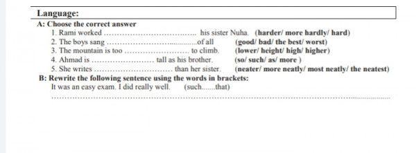 حل السؤال الانجليزي الصف العاشر Words Sentences Language