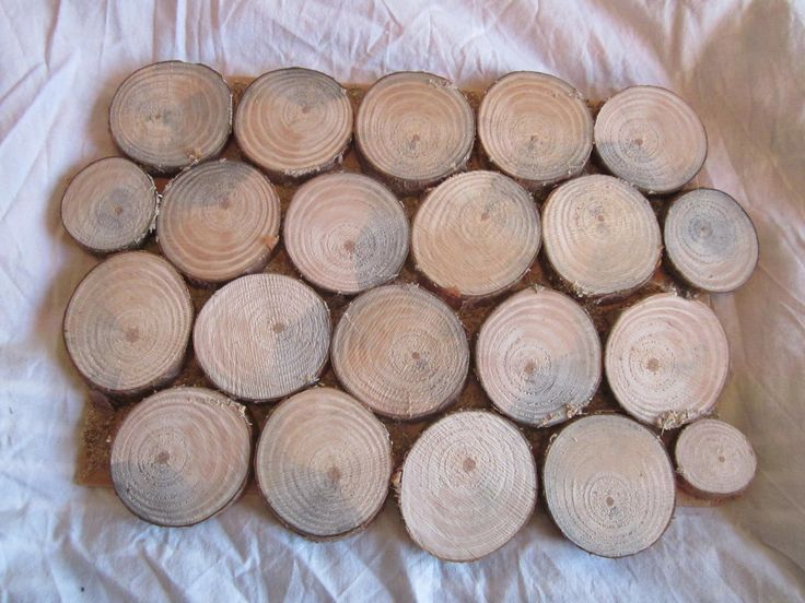 houten schijven op bord No. 2 gezaagde schijven van tak, gelijmd op een bord. als decoratie aan de muur; als onderzetter aan tafel; als display voor verkoop van sieraden.
