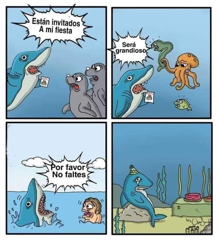 El Tiburon No Es Como Lo Pintan Tiburones Divertidos Imagenes Humoristicas Memes Divertidos