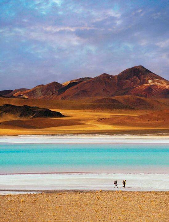 El desierto es increíble! Miren este paisaje y esa laguna... una de las más linda donde he mojado mis plumas!