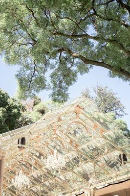 Beautiful wedding venue, Sheptstone Gardens. Photo by Jessica Notelo. #shepstonegardens #wedding #venue #glassroof #weddingphotography #photographer #jessicanotelo www.jessicanotelo.co.za