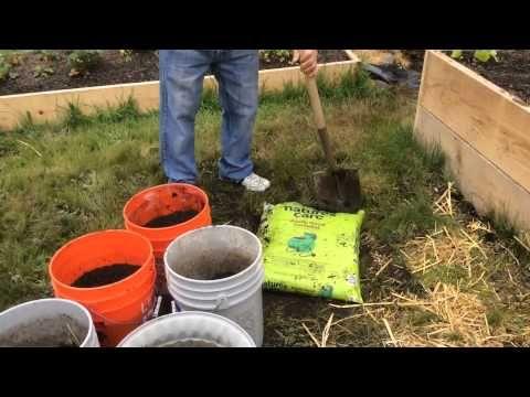 Чем заполняются ведра для выращивания томатов, огурцов, перцев, баклажан. - YouTube