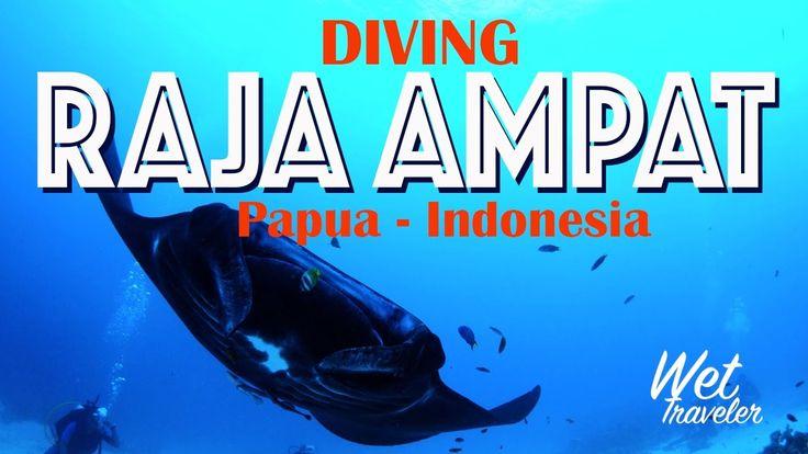 WetTraveler in RajaAmpat with Raja Ampat Dive Resort
