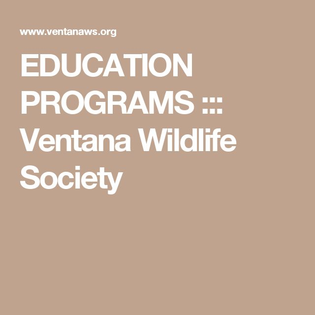 EDUCATION PROGRAMS ::: Ventana Wildlife Society