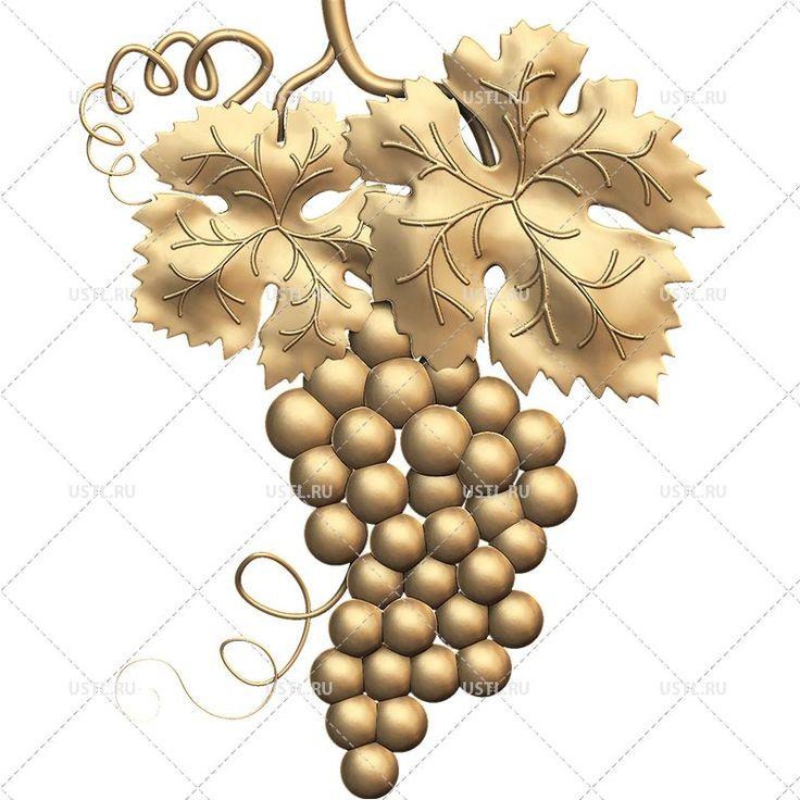 лучше брать, картинки виноградная лоза с листьями для арткам монтажа