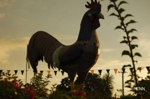 Rooster sculpture on the island of New Providence