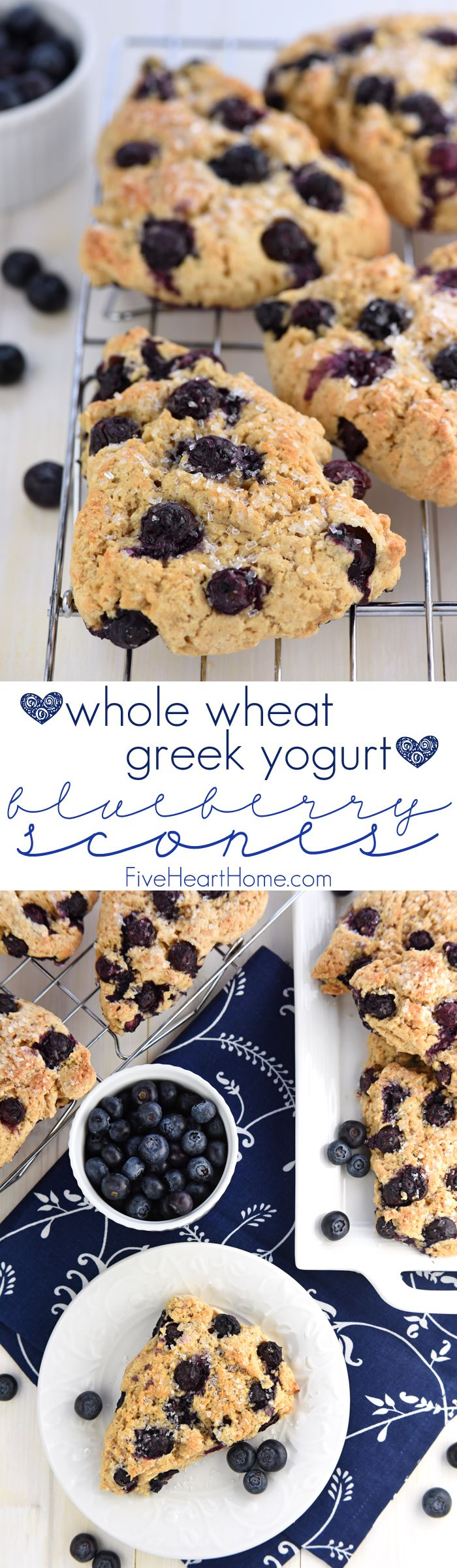 Whole Wheat Greek Yogurt Blueberry Scones ~ tender, moist, and bursting with berries, these scones are a wholesome spin on a classic breakfast treat...but nobody would ever guess by their delicious, decadent flavor! | FiveHeartHome.com