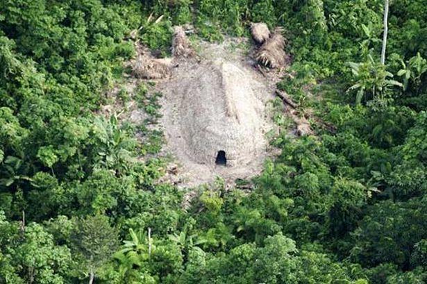 amazon rainforest tribes women - Google Search