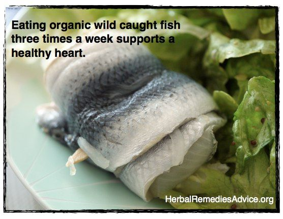 Eating organic wild caught fish three times a week supports a healthy cardiovascular system.    Who knew?  eb