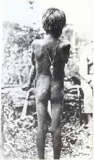 rubber boom slavery Following the slave market and rubber boom, rosewood, animal skins, live  animals, timber, and presently petroleum have characterized exports a walk  down.