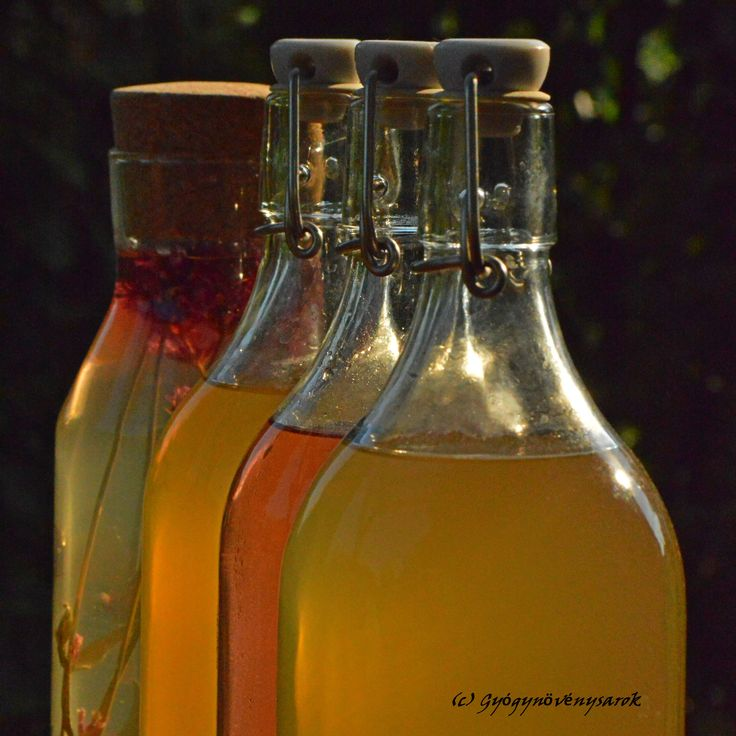 Syrup fom lavender, menta, elderflower or lemongrass.  Menta, levendula, citromfű és bodza szörp.