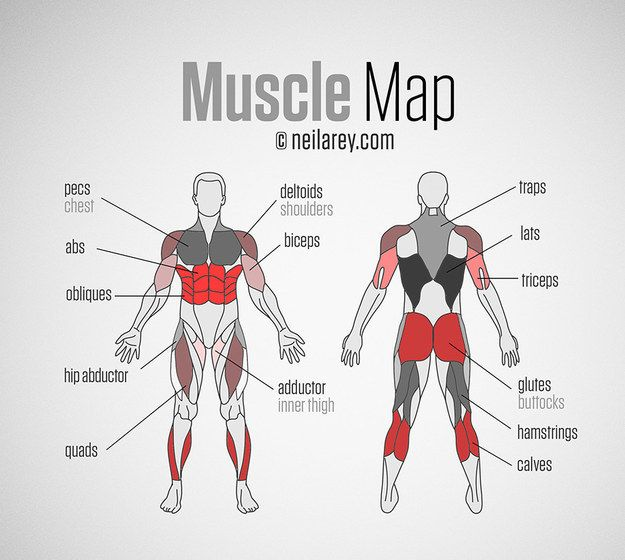 For help hitting all your major muscle groups. | These 29 Diagrams Are All You Need To Get In Shape