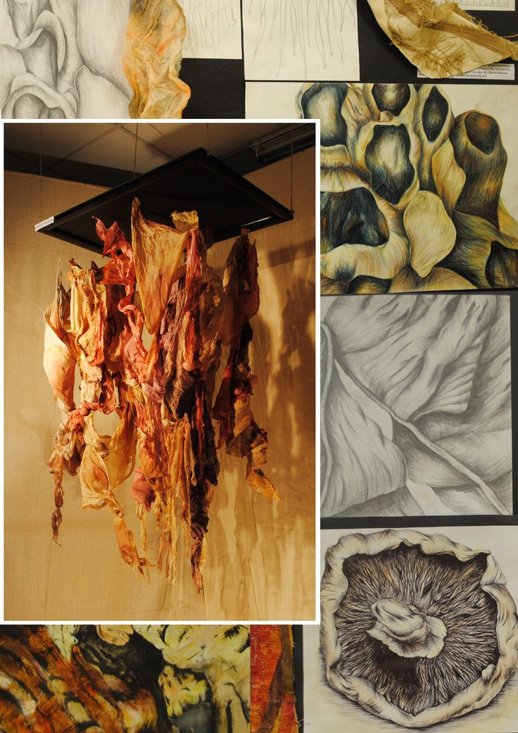 Nicolle AS Coursework final piece and prep work. Tupton Hall School.