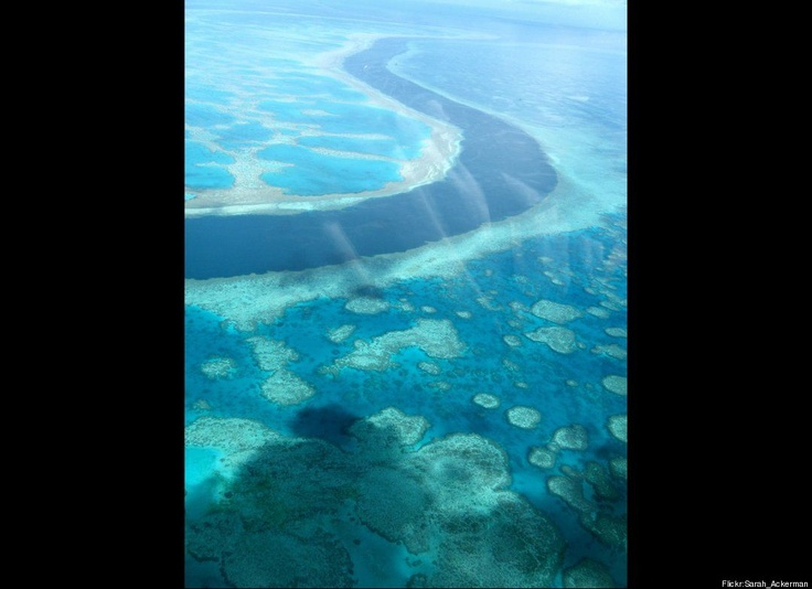 Great Barrier Reef, Australia: Buckets Lists, Australia, Beautiful Places, Places I D, Greatbarrierreef, Great Barrier Reefs, Tropical Islands, The Great, The World