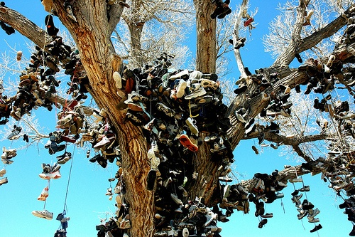 The Shoe Tree of Middlegate | Atlas Obscura