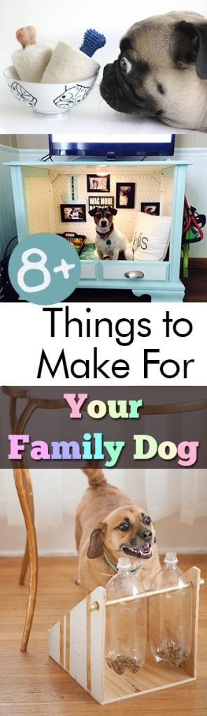 8+ Things to Make For Your Family Dog| Crafts, Family Crafts, Pet Projects, DIY Pet Stuff, DIY Pet Crafts, DIY Dog Toys, Homemade Dog Toys #Dogs #DogToys #PetStuff