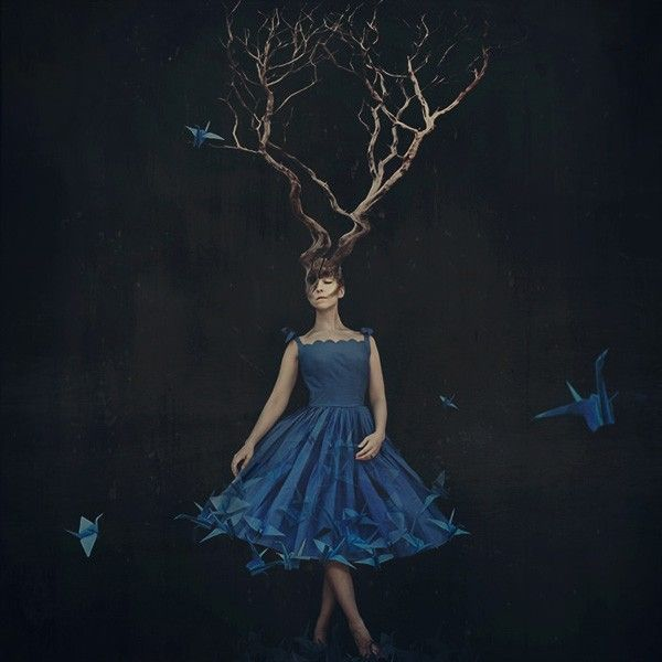 empty nest - Amazing Photography by Brooke Shaden  <3 <3