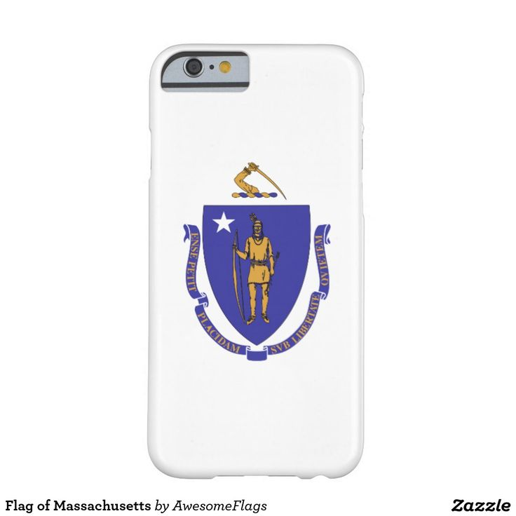 Flag of Massachusetts Barely There iPhone 6 Case