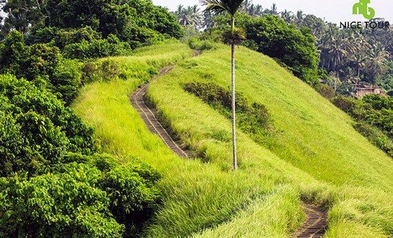 Campuhan Ridge Walk, Ubud Bali.