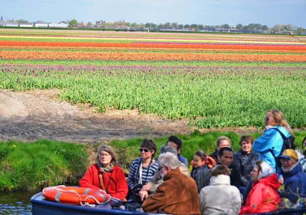 10 WAYS TO VIEW DUTCH TULIP FIELDS IN BLOOM The South Holland Top 10 List for April focuses on the colour spectacular that happens every year when the tulip fields in South Holland's Dune & Bulb region are in full bloom... http://blogs.angloinfo.com/mooi-south-hollands-top10/2017/04/06/10-ways-to-see-dutch-tulip-fields-in-bloom/