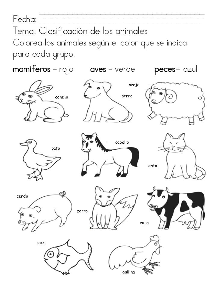 Animales Para Colorear Con Partes Buscar Con Google Con