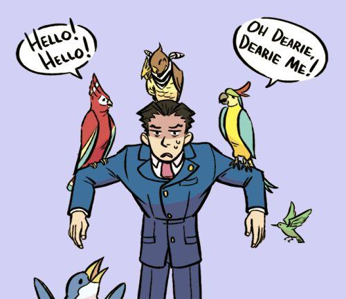 phoenix wright, ace bird whisperer