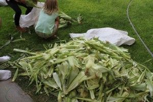 A PYP Best Blog! Preserving & Freezing Fresh Corn! - http://www.pinchingyourpennies.com/pyp-best-blog-preserving-freezing-fresh-corn/ #Corn, #Freezing, #Freshcorn, #Pinchingyourpennies, #Preserving, #Yummy