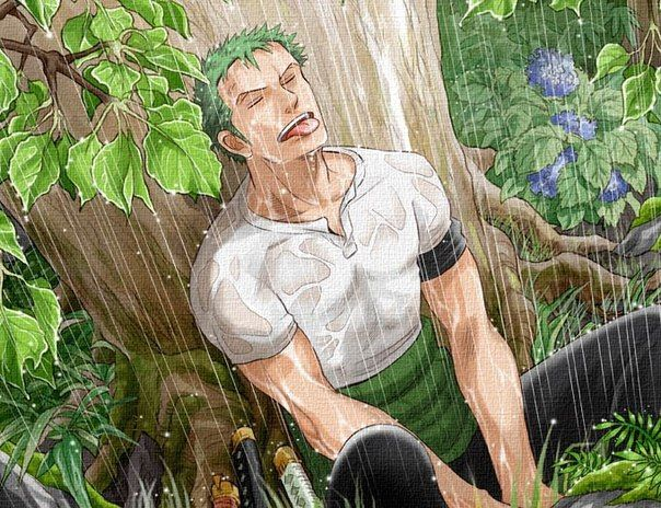 Roronoa Zoro/Ророноа Зоро|One Piece|'s photos