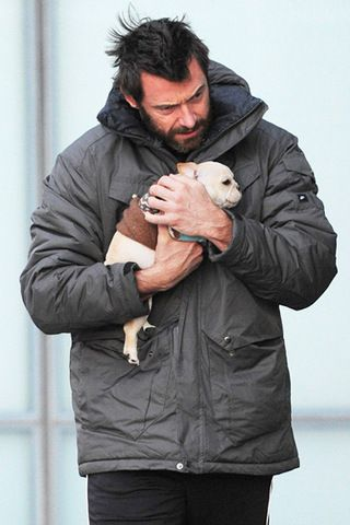 Hugh Jackman and Peaches // If you're a dude who is kind to animals you are hot not matter what your face looks like.