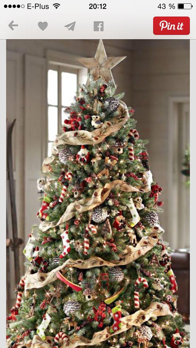 Pin By Elaine Lockhart On Christmas Trees Pinterest