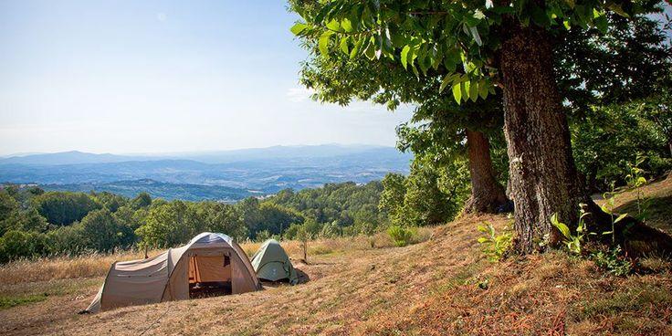 Camping Lucherino - Monticello Amiata Cinigiano - 70 plaatsen - 1524 km - zoover 8,5 - reistijd 15:23