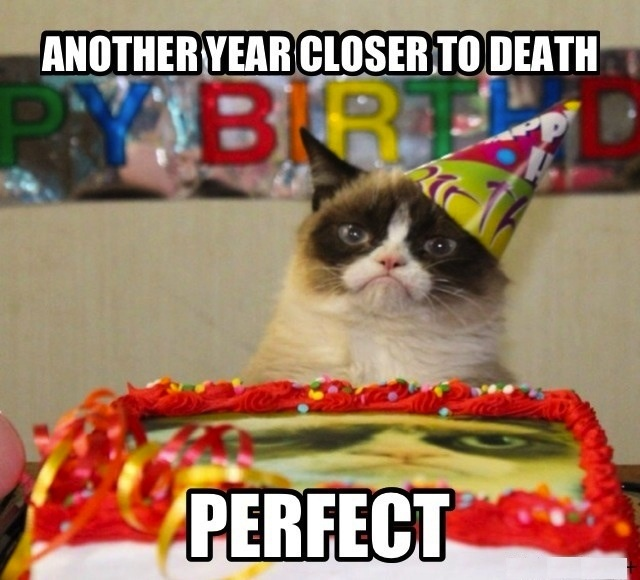 Grumpy Cat birthday ...For more funny animal memes and jokes quotes visit www.bestfunnyjokes4u.com/lol-funny-cat-pic/