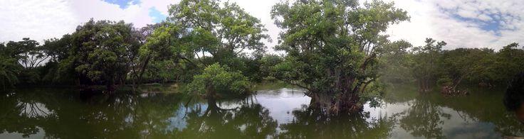 Ecoparque de la salud, Celebración Día internacional del agua, Cartago