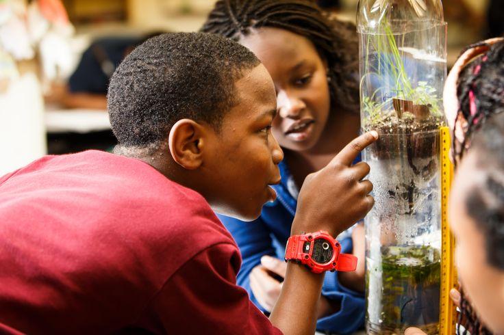 Philadelphia Charter School for the Arts & Sciences at H.R. Edmunds | Philadelphia School Partnership