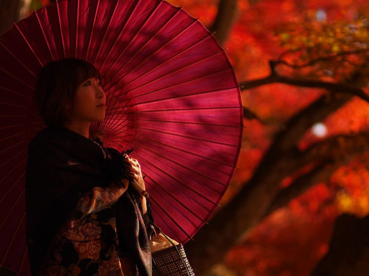 https://flic.kr/p/exkfNZ | 愛知県香嵐渓の紅葉 日本の秋 | OLYMPUS DIGITAL CAMERA