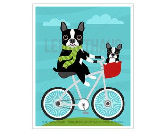 151D Dog Print Boston Terrier on Penny Farthing by leearthaus