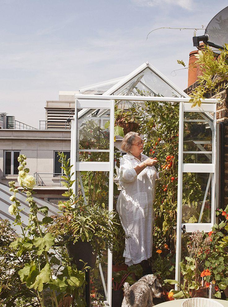 Roof Gardening Ideas best 25+ rooftop gardens ideas on pinterest | rooftop, jennifer