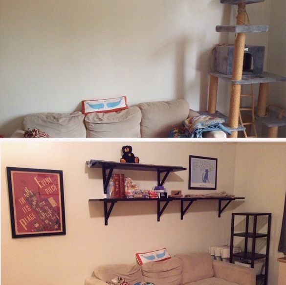 Using shelving and normal blankets as cat-friendly spaces instead of a gaudy cat tree