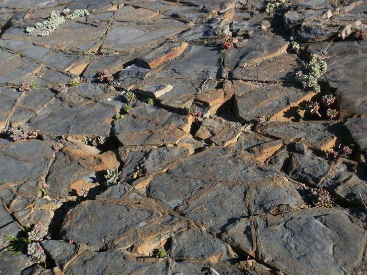 Piso de piedras, los molles. Formación natural