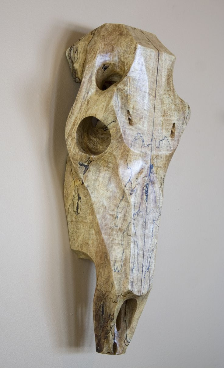 Best animal skulls images on pinterest