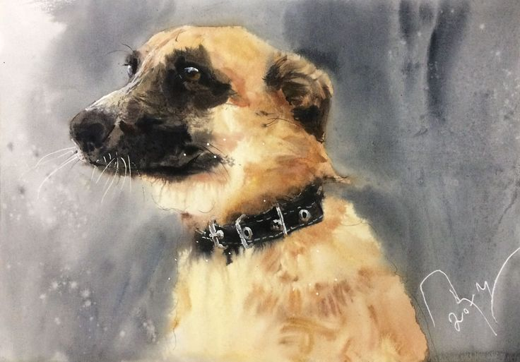 Juli / dog / watercolor / #Petrulenkov
