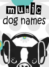 Our mega database has thousands of Awesome Dog Names all sifted and sorted by theme to make your search quick, easy, and a whole lot of fun.