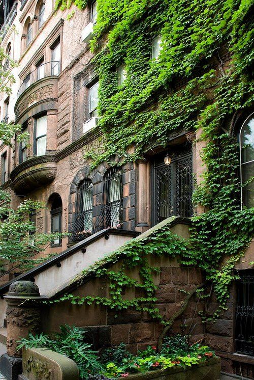 Brownstone, New York City, USA.