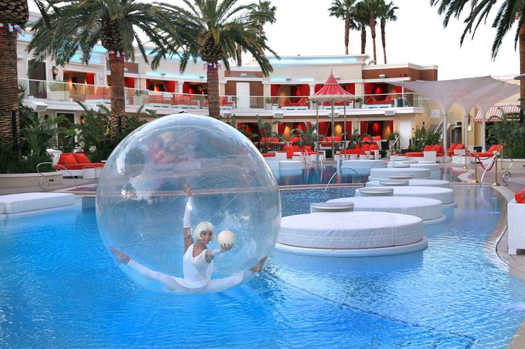 Pin by novelty entertainment on bubble girls pinterest for Pool trade show las vegas