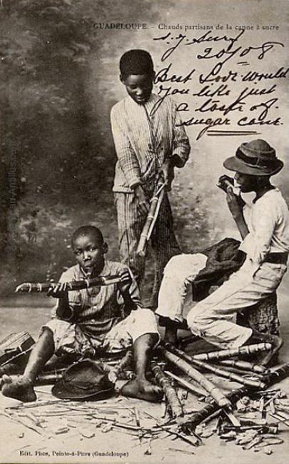 Amateurs de canne à sucre en 1908