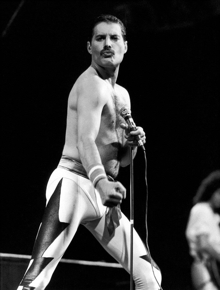 Freddie Mercury. - we named our dog after him, we love Fred so much!