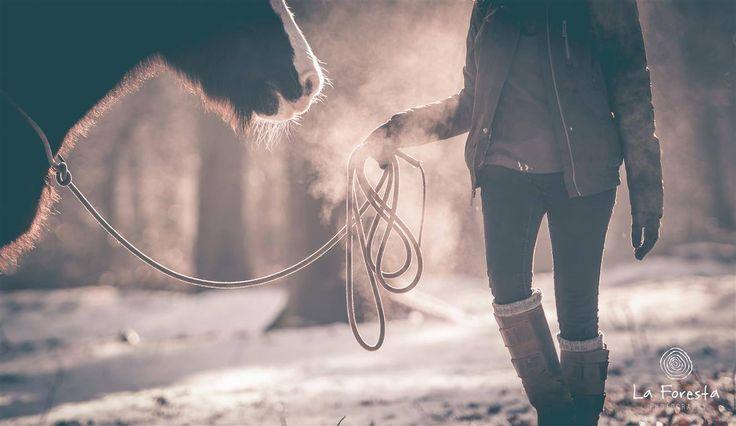 Paardenfotografie - fotoshoot met paard - www.la-foresta.be