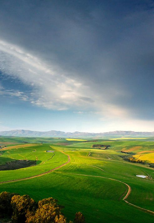 Fine Art Landscape Photographer - Liesel Kershoff: July 2009 Western Cape